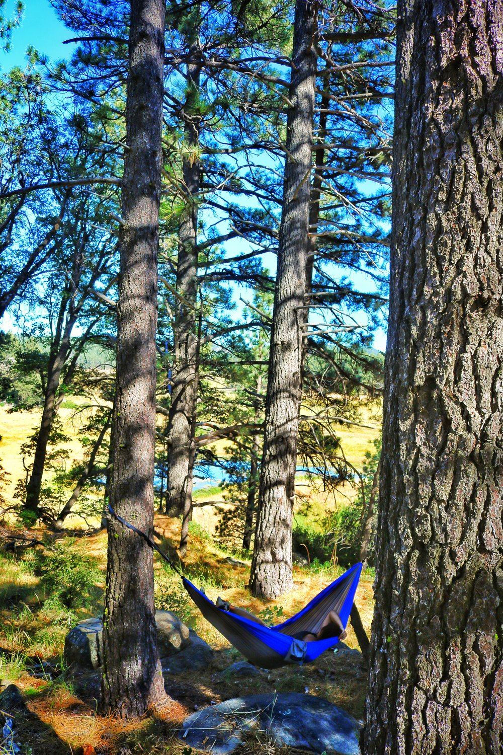 Nothing says freedom like sleeping in a hammock while backpacking.