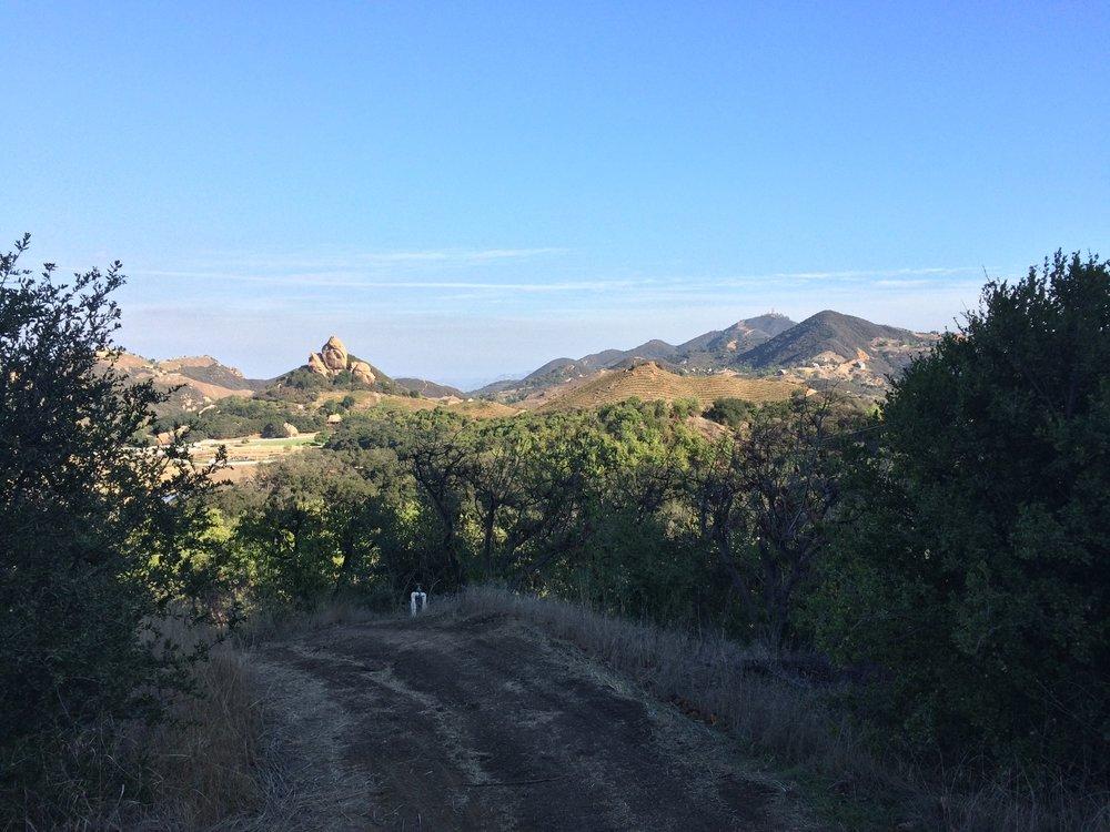 Malibu Wine Hikes take place at the scenic Saddlerock Ranch, outside of Malibu