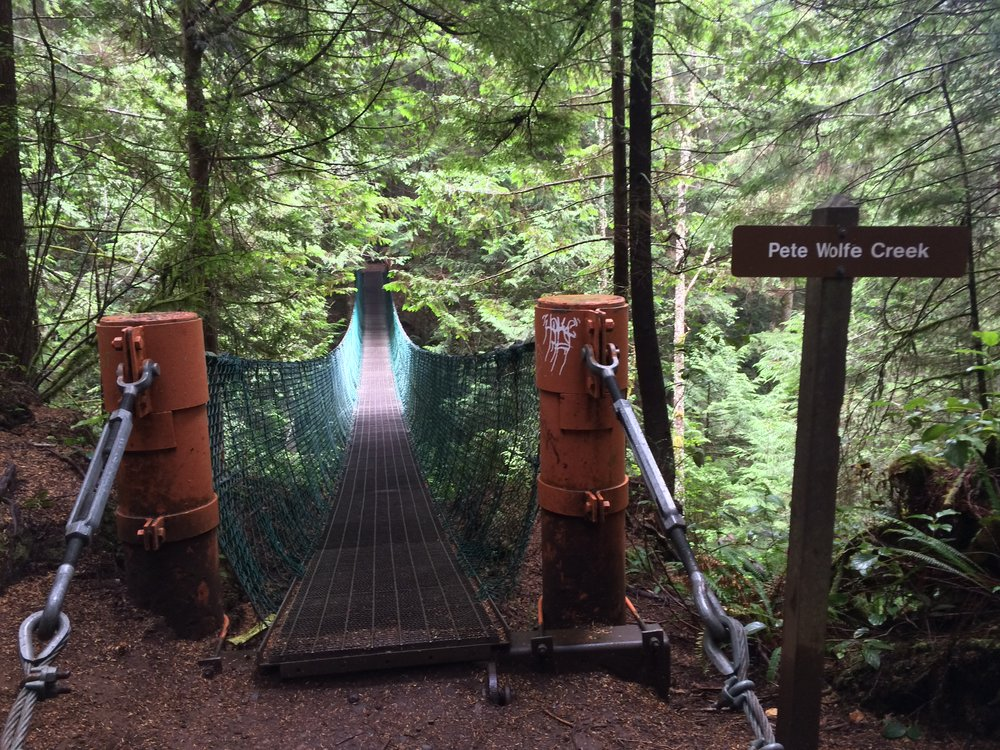 The suspension bridge that crosses Pete Wolfe Creek is one of the highlights of the hike.
