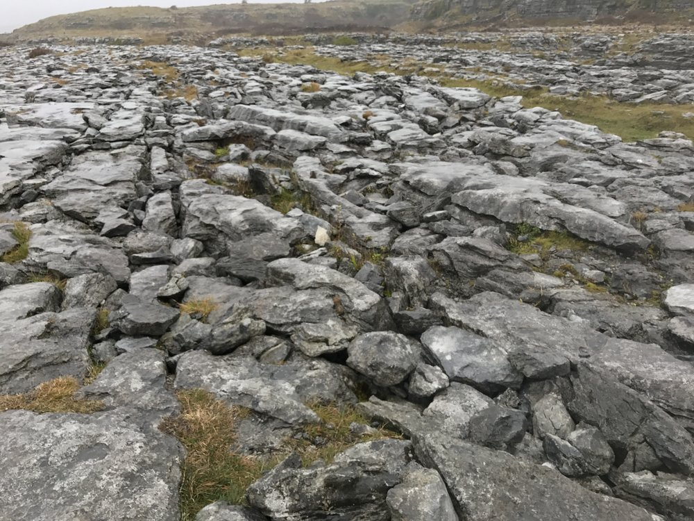 The Burren is one of the most geologically interesting portions of Ireland. In a small valley in the Burren region is Corcomroe Abbey.