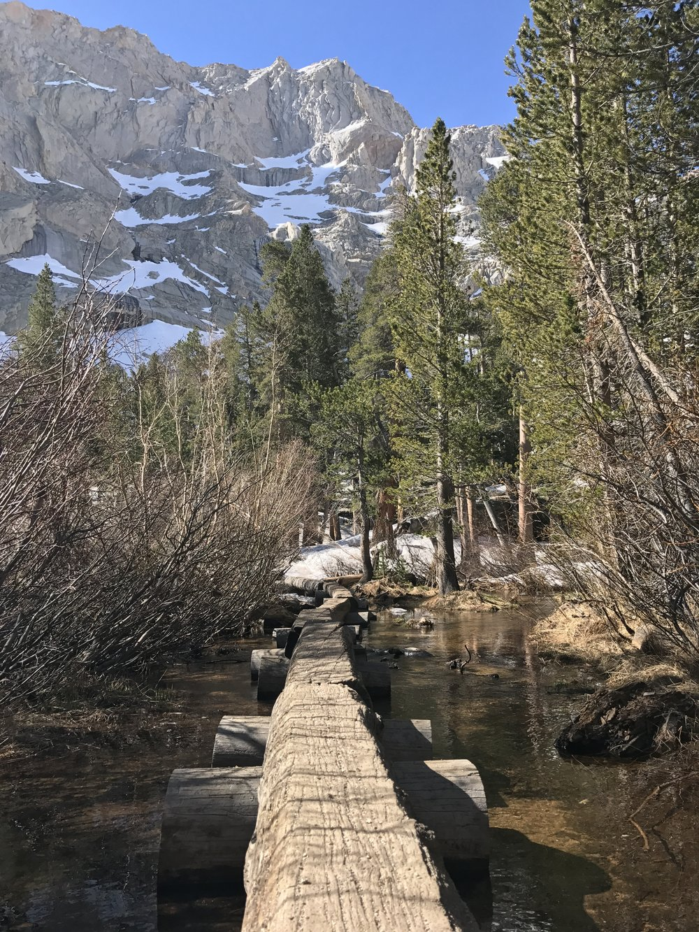 The only turn hikers need to make to reach the lake is shortly after this log bridge.