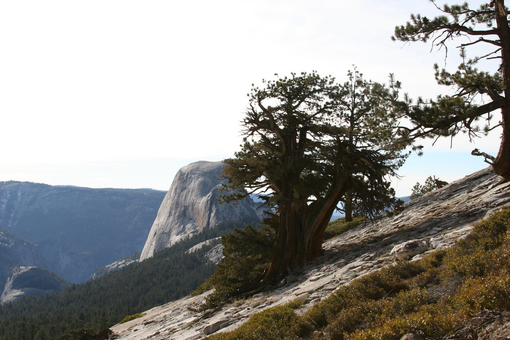 Past Little Yosemite Valley, the trail heads up a series of switchbacks before producing great western views of Half Dome