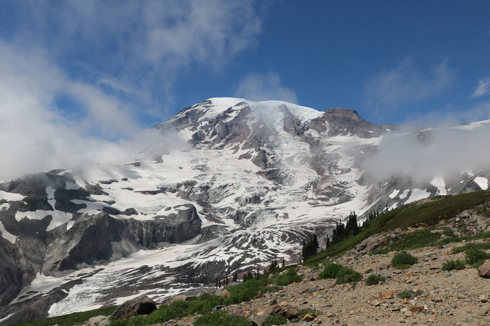 "One of the best spots to catch a glimpse of ""the mountain"" (Rainier) is at Panorama Point, which can be accessed by the Skyline Trail"