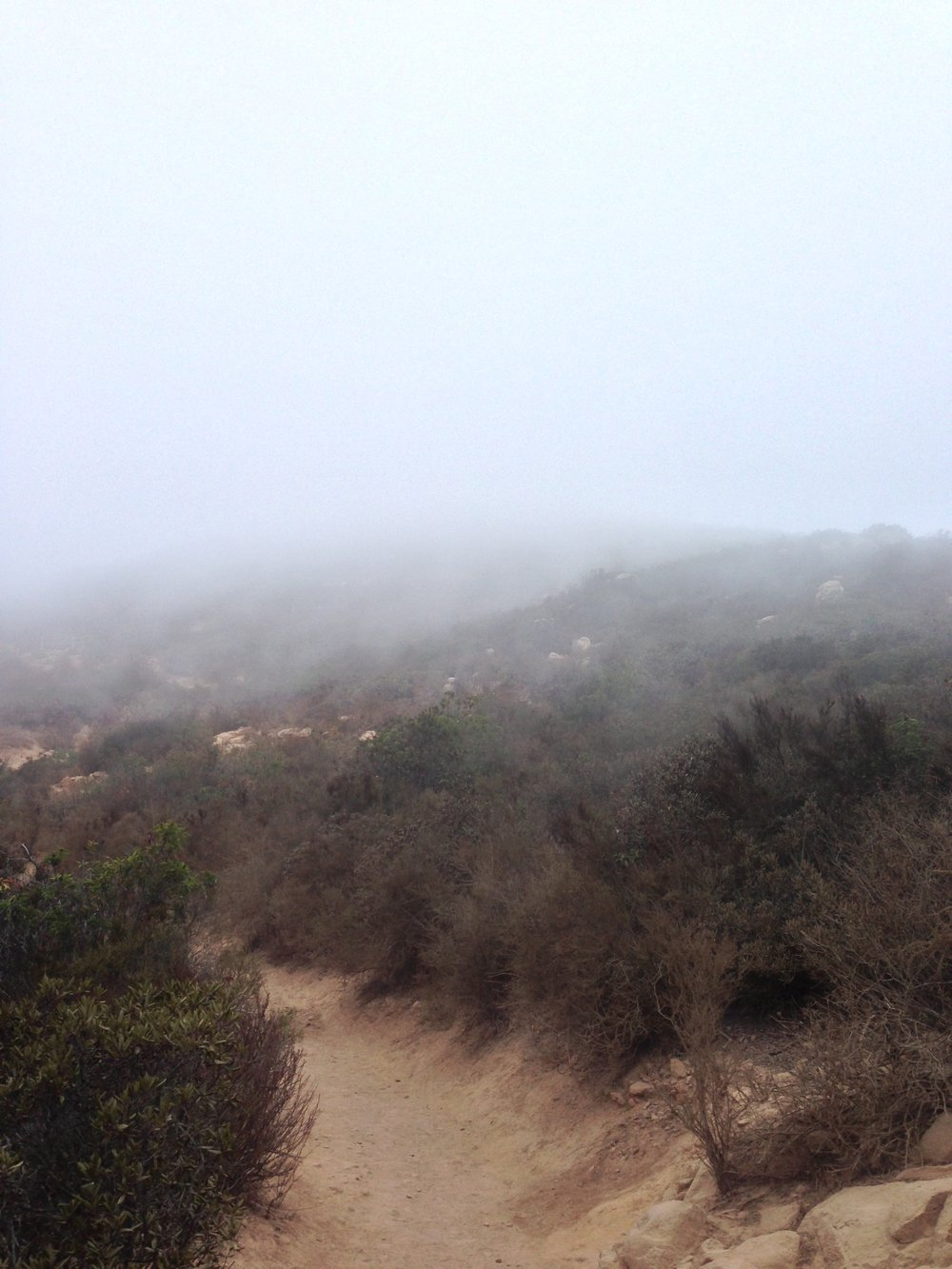 Because of its proximity to the coast, Cowles Mountain is often covered in fog during the early morning.