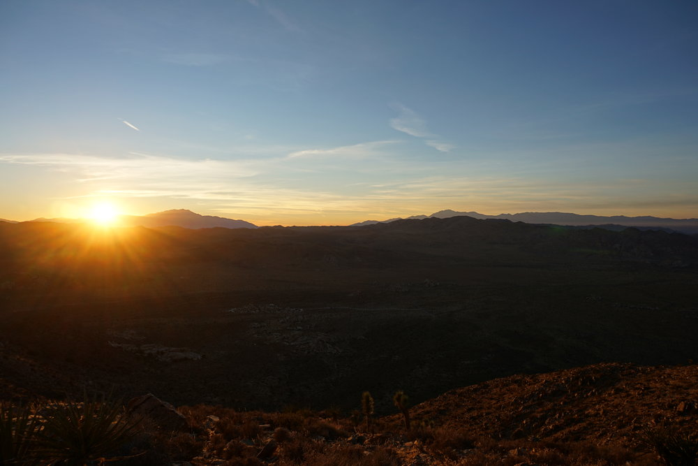 Ryan Mountain is a great spot within Joshua Tree to watch the sun set.
