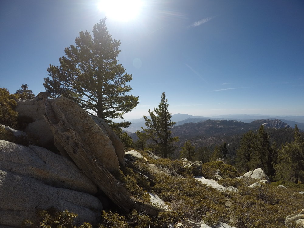San Jacinto has a number of stunning views in a variety of directions.