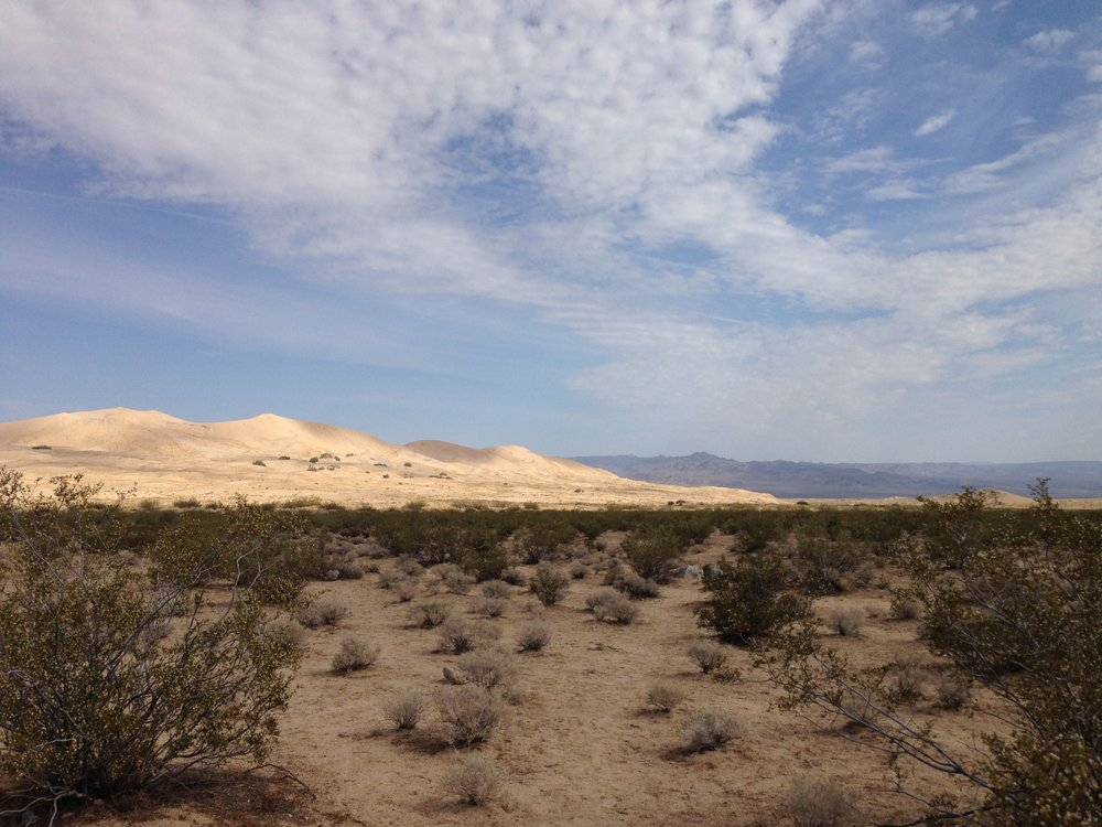 Kelso Dunes, Mojave National Preserve