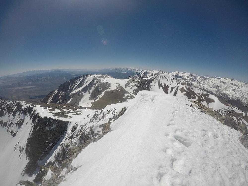 Summit, Mount Dana, June 2018