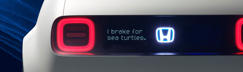 Urban_EV_sea_turtles.png