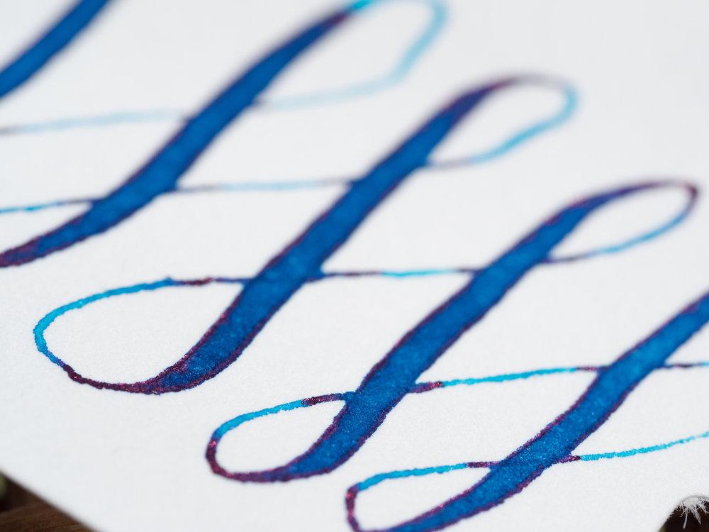 Paper Close Up.jpg