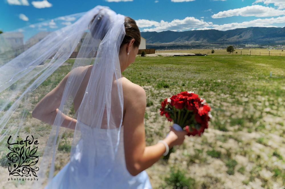 liefdephoto-230-20080524-2.jpg
