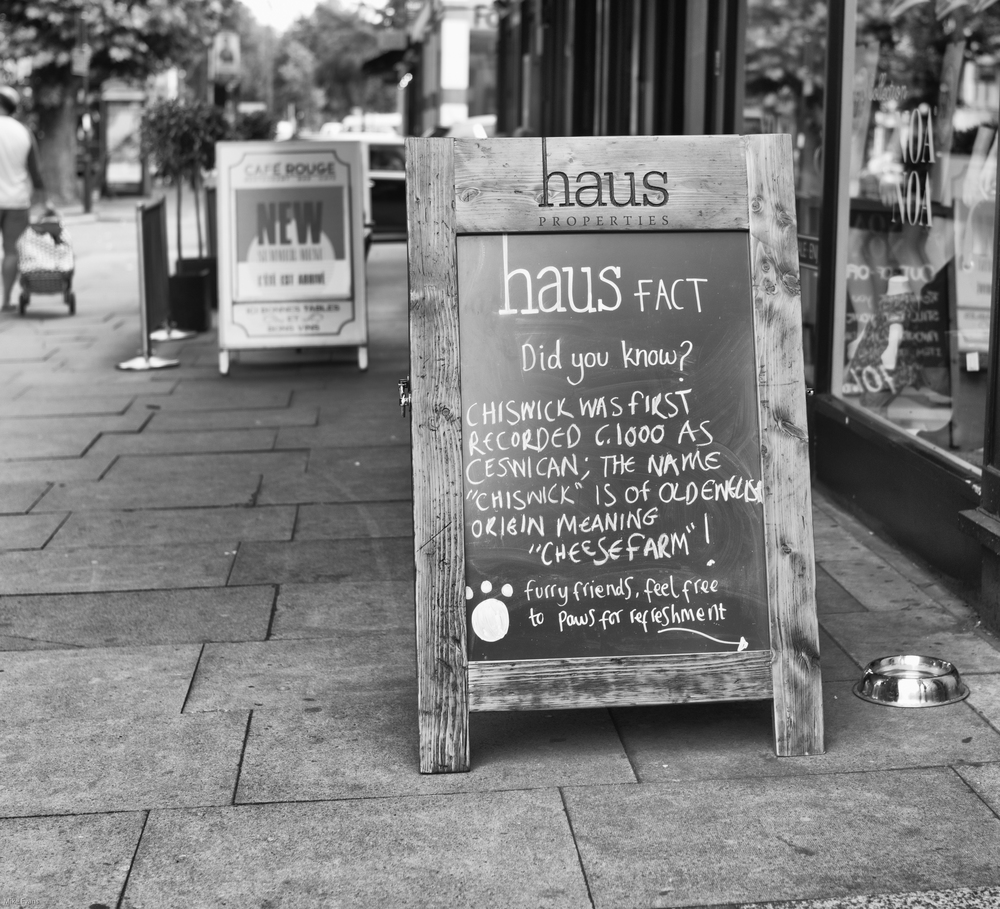 Haus Pets: 35mm Summilux ASPH, 1/2000s at f/2, 320 ISO (Photo Mike Evans)