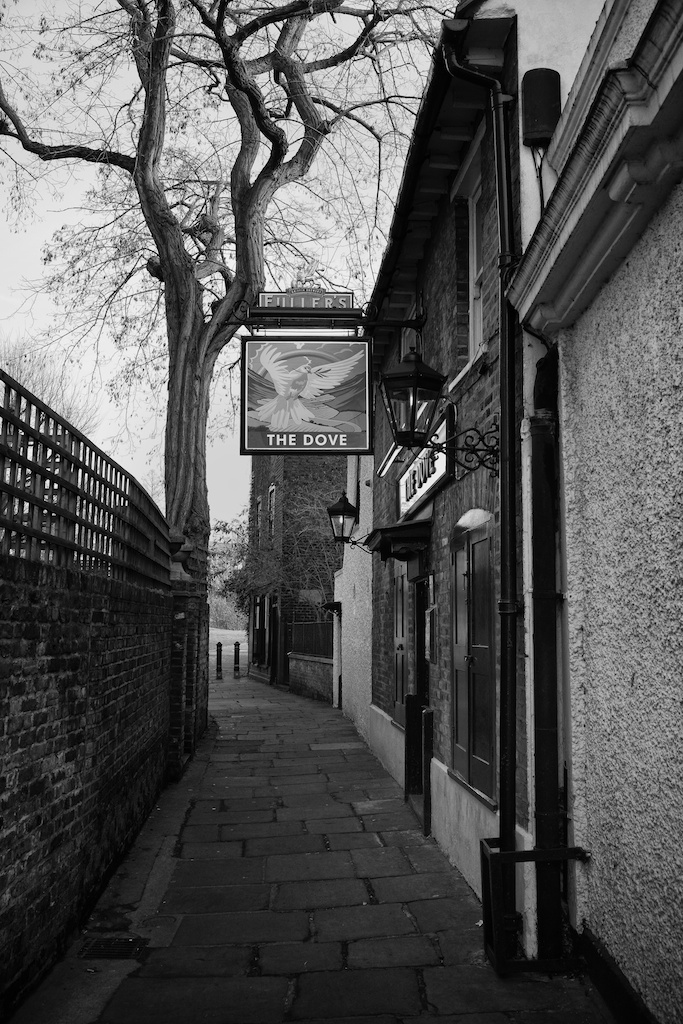 The Dove at Hammersmith, dating back to the 17th century. In the distance, towards the end of the terrace is the house where the Doves Press was established. The riverside terrace of The Dove is one of the most famous Thames-side pub locations