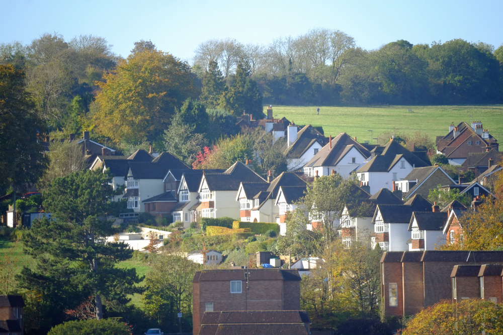 Samyang 300mm Guildford Houses 1.jpg