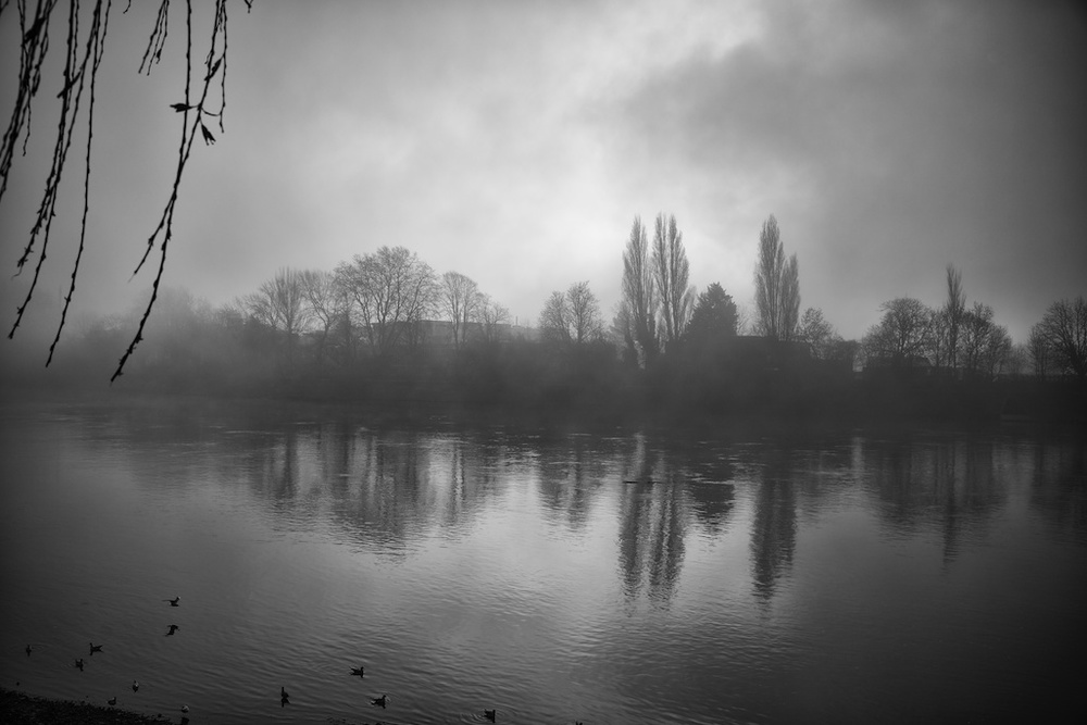 View across the misty Thames from the back window of the Doves Press (Photo Mike Evans, Sony A7r and 35mm Leica Summilux-M FLE)