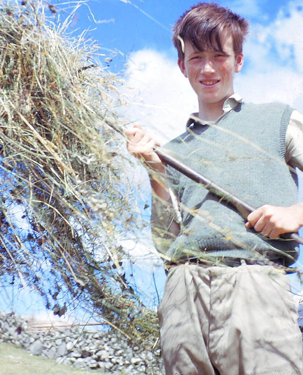 "Editor Evans queried my expression ""saving hay"" so, just to prove the point, here is a young red-haired William in the process of saving hay. It's what the English call ""making hay"". Another Super Baldina shot, this time in Kodachrome. Maybe it wasn't such a bad lens after all...."