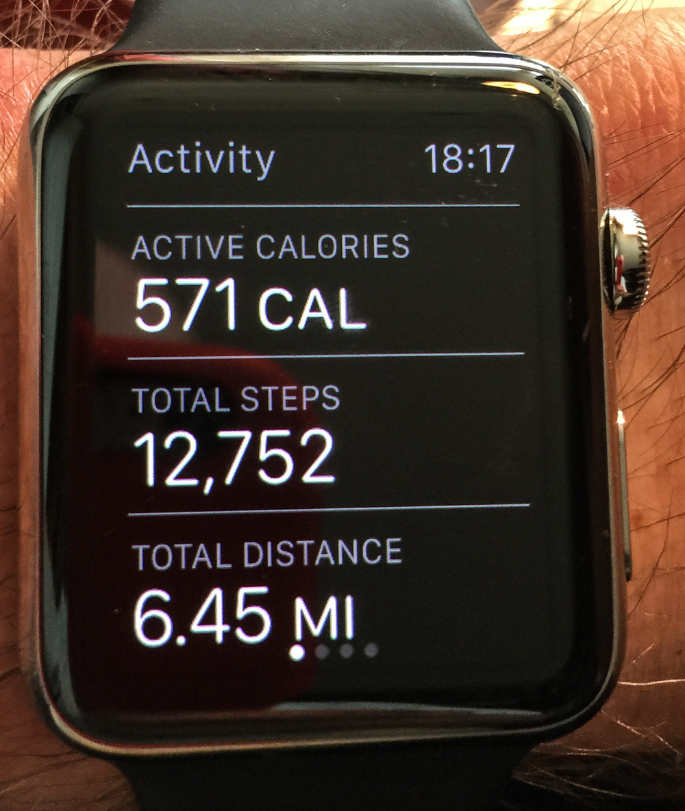 Reviewing the day's activity is a pleasure, with the goal of 10,000 steps exceeded and a respectable daily mileage to add to the month's statistics. This is today's summary so you can see I haven't spent the whole time sitting here writing about the Apple Watch