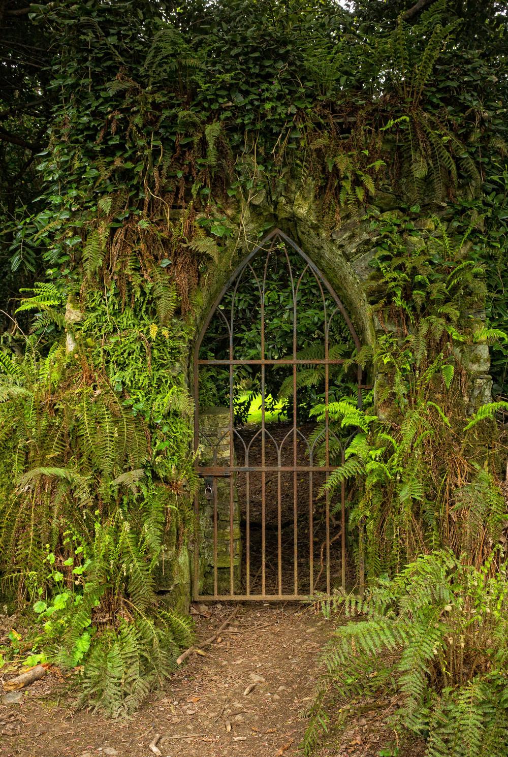 Kilmacurragh Arboretum May 2016 4 Overgrown Gate  (1 of 1).jpg
