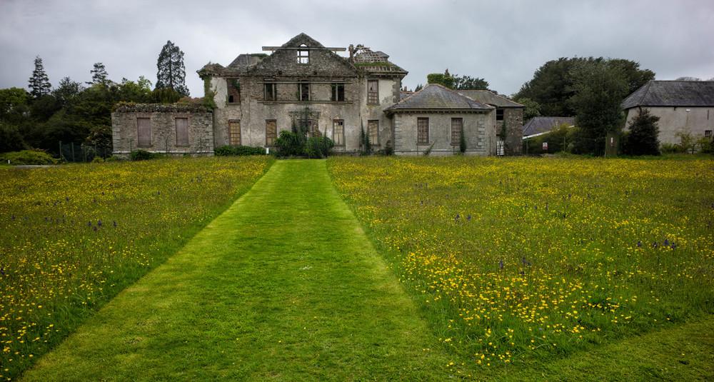 Kilmacurragh Arboretum May 2016 10  Ruined Mansion and Flower Meadow  (1 of 1).jpg