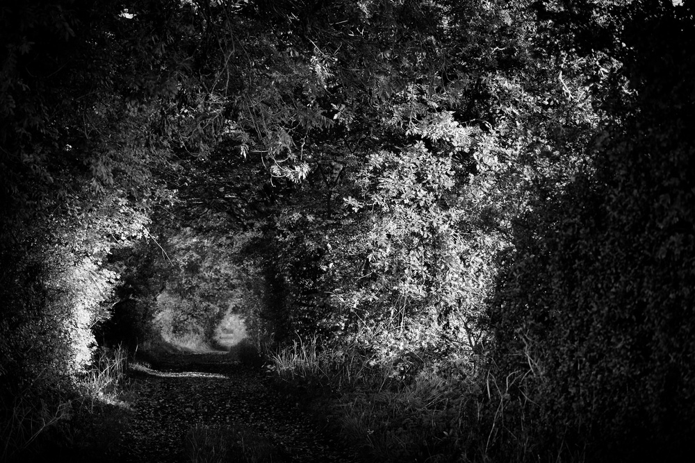 Light at the end of the tunnel Leica SL with 24-90 Vario Elmarit SL Asph.