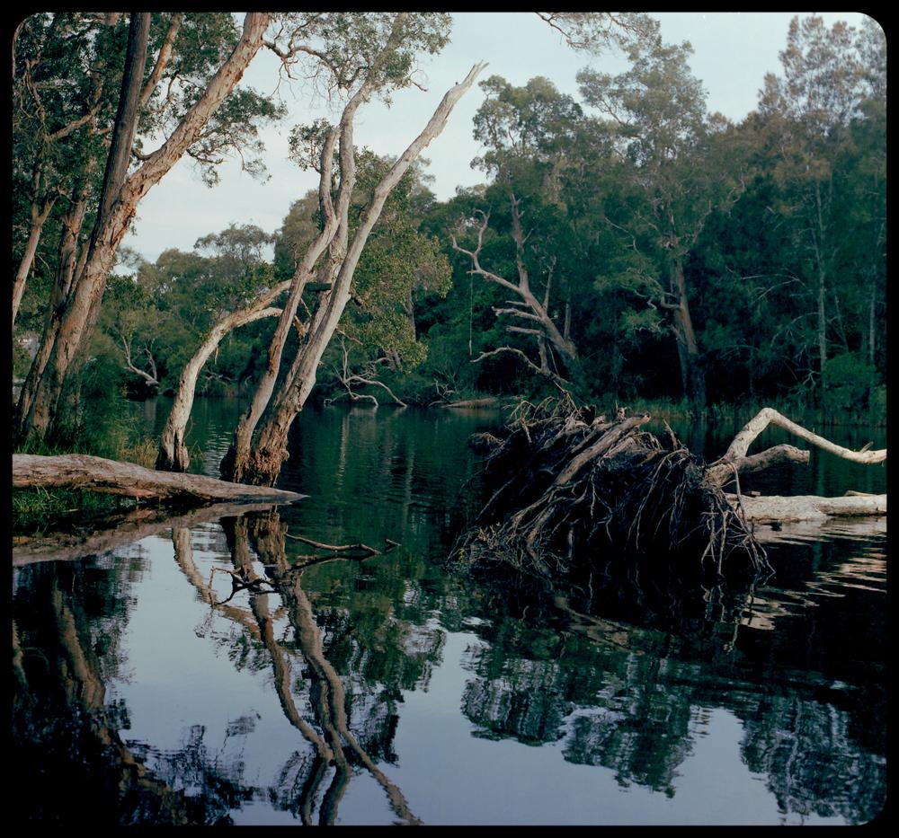 Avoca Lagoon