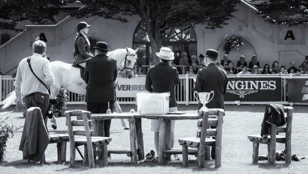 31-Horse Show 2014 16.jpg