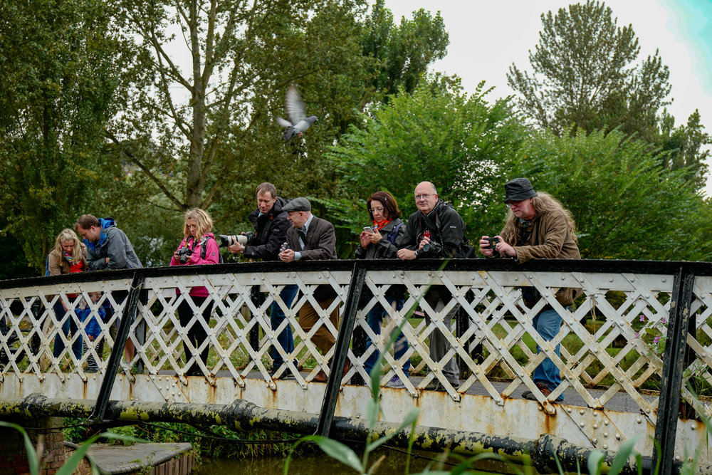 Unadulterated excitement above the River Wey in Guilford. Farnz wouldn't have been so sanguine had he noticed the dive bomber about to perform. That bird must have known he was a Leica IIIg owner.