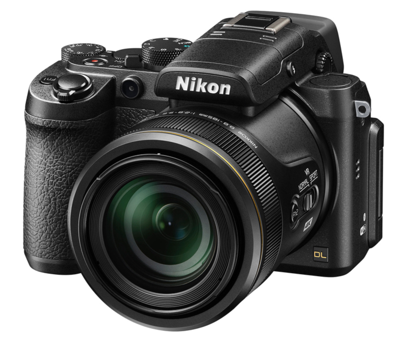 Nikon's deleted competition for the RX10 and FX2000