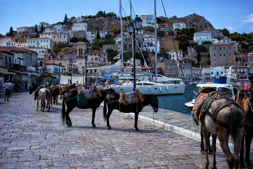 17 AWOG 2014 Local Transport in Hydra_.jpg