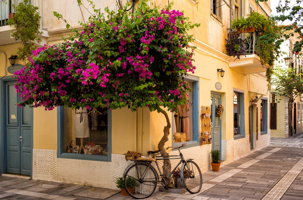 45 AWOG 2014 Bicycle and Street Plant in Nafplio.jpg