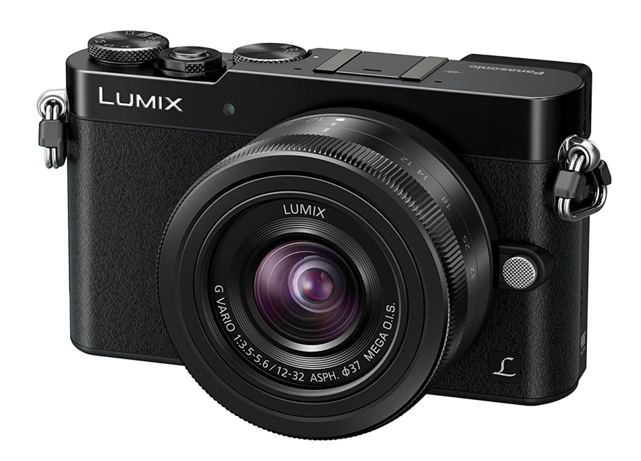 The GM5 is slightly larger and heavier but brings a built-in electronic viewfinder to the pocket party stakes