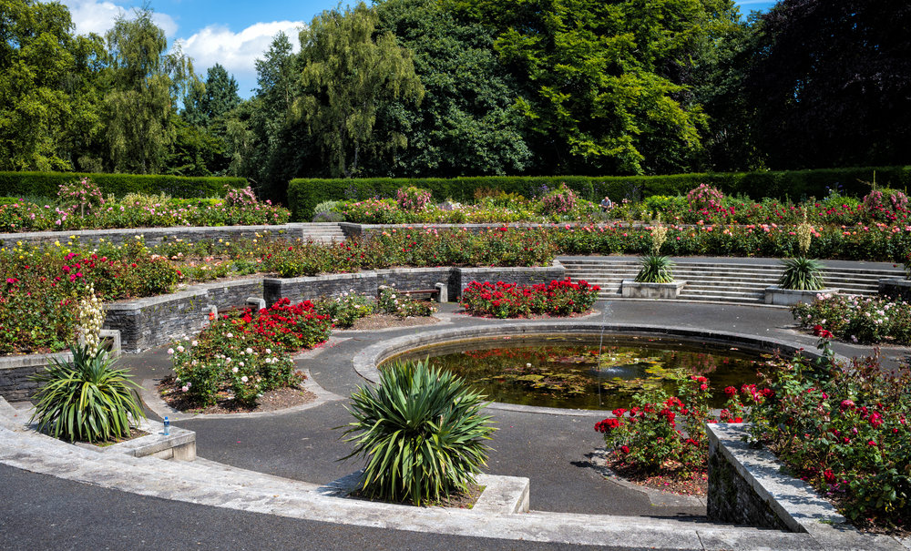 26 VPK War Memorial Garden Islandbridge July 2017 Rose Garden 1-.jpg
