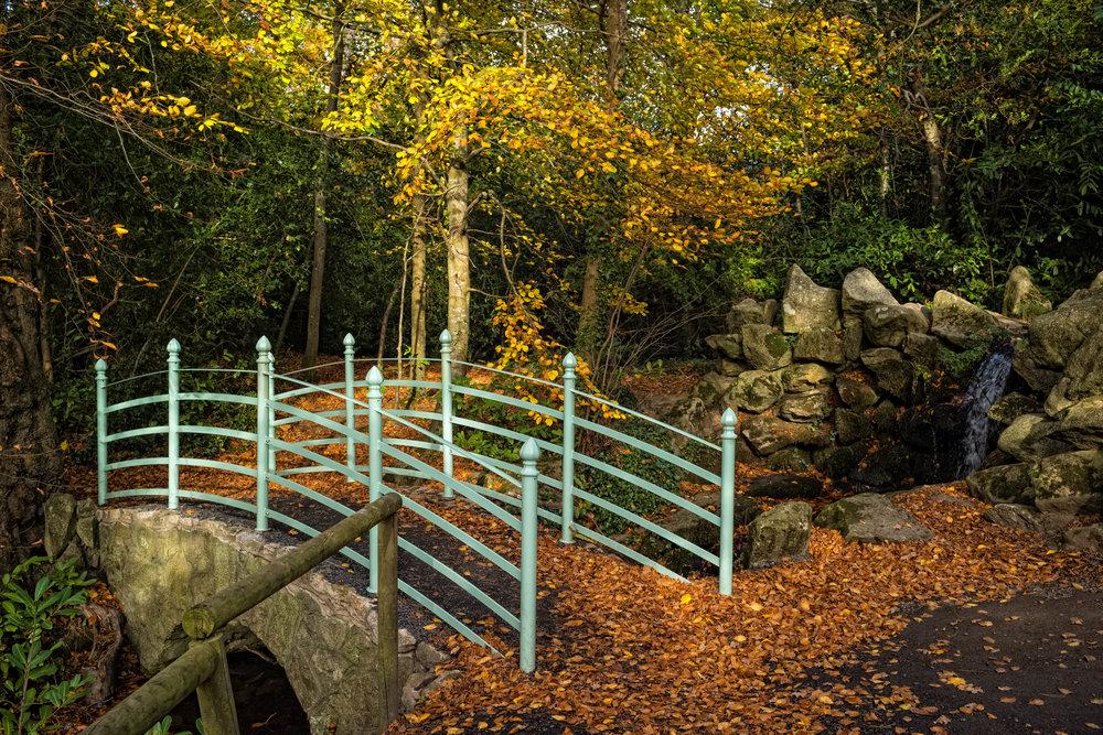 15 Marlay Park November 2017 Autumn 3-.jpg