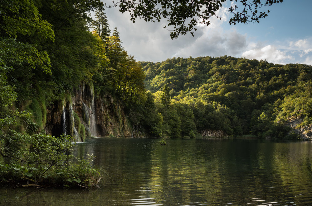 Plitvice in the summer   —full of leaf, ordered and tranquil