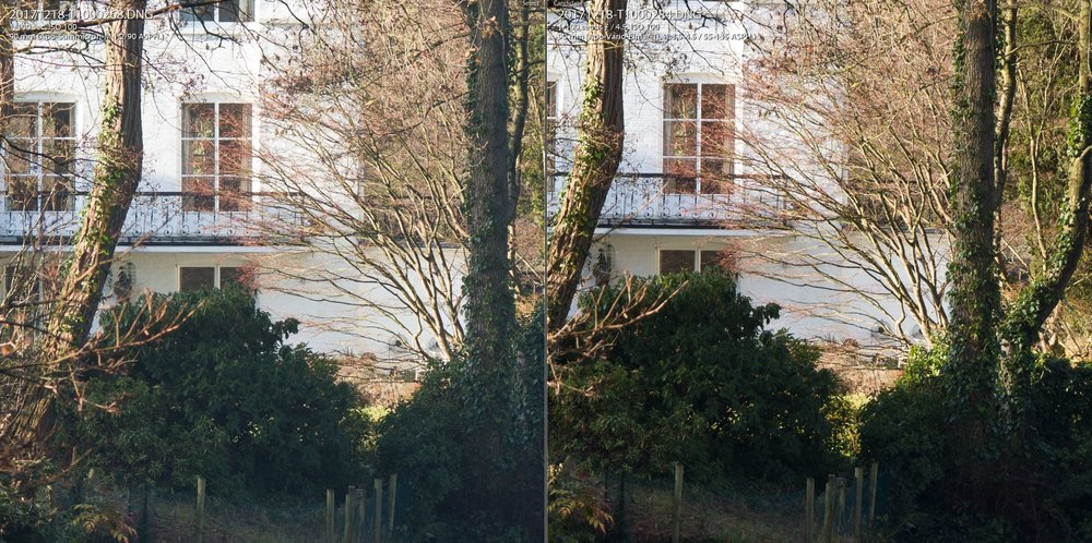 1-1 crop: 90mm-f4.5 comparison. Summicron on the left, 55-135 TL on the right