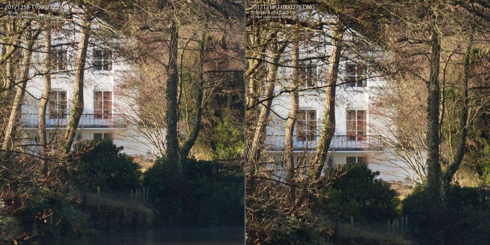 1-1 crop: 50mm f4 comparison. Summilux on the left, 55-135 zoom on the right