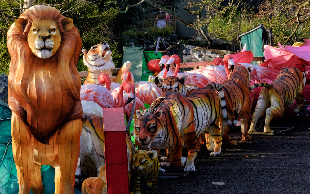 3 January 2018 Dublin Zoo Chinese Lanterns 5-.jpg
