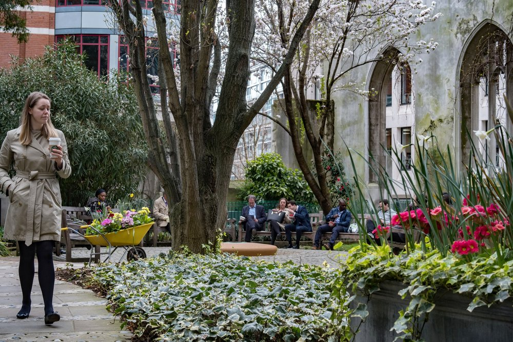 Lunch in the City (Leica CL) this is the erstwhile nave of the church of  St.Dunstan-in-the-East , preserved as a memorial to the bombing of London during the second world war. It is now a tranquil place to drink your Starbucks and eat your M&S sandwiches