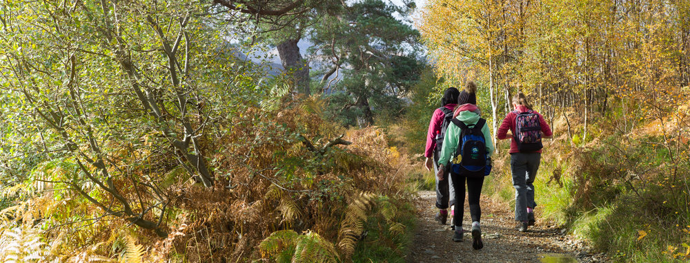Autumn colours on the path alongside Loch Affric