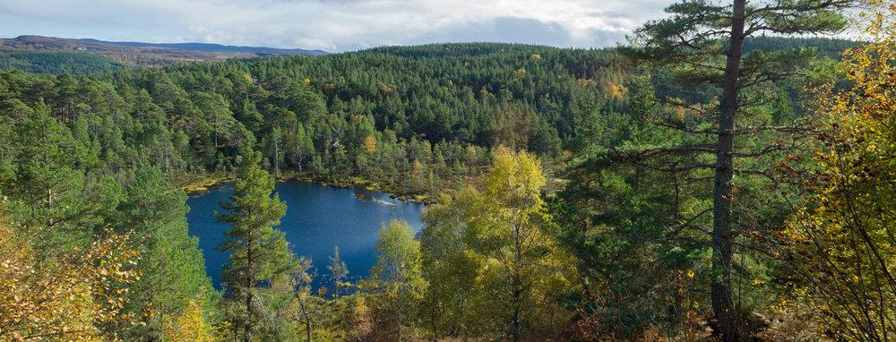 Corie Loch on the Corie Loch Trail