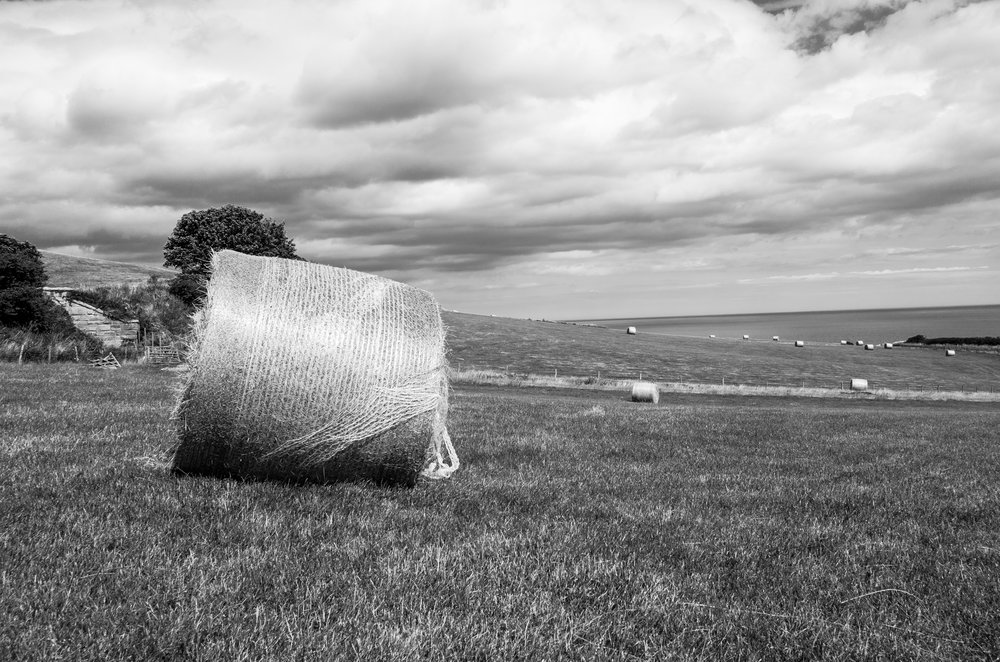 Hay bails on the Cleveland Way