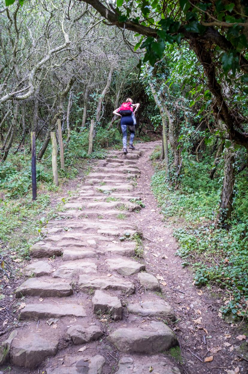 The fairy steps