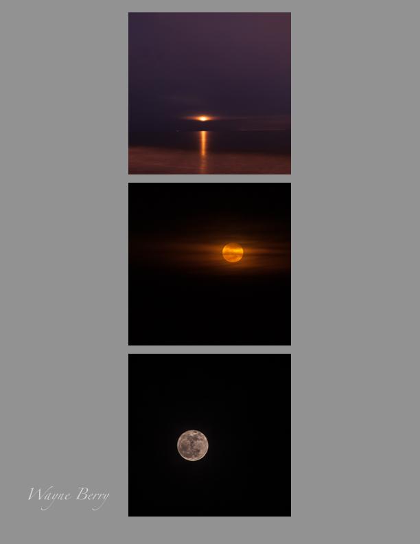 Moon x3.jpg