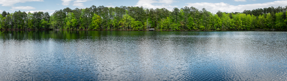 Processed with the new panoramic feature in Lightroom CC/Lightroom 6
