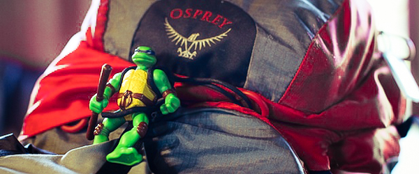 Donatello, my travel talisman and patron turtle of creativity and lateral-thinking