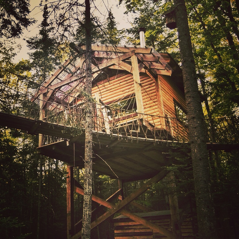 Peter Pan Treehouse Channeling Peter Pan in a