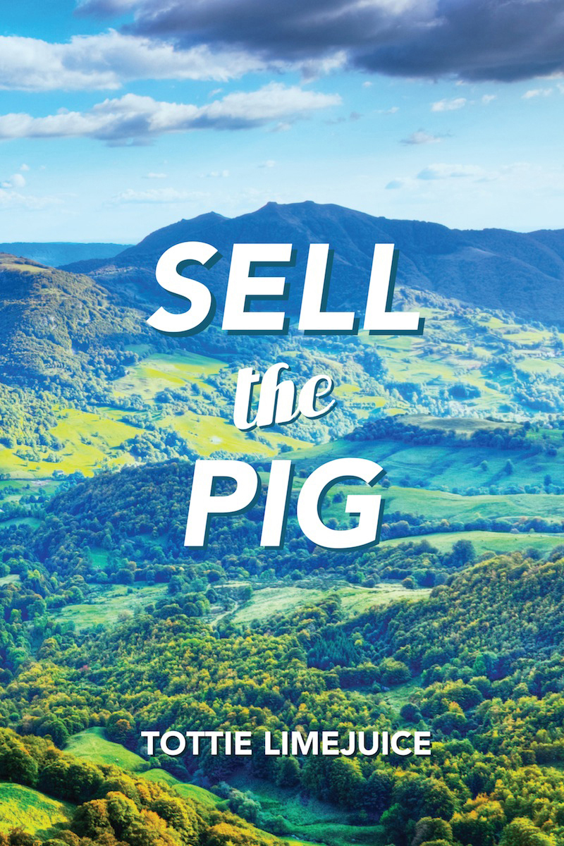 Sell the Pig FRONT.jpg