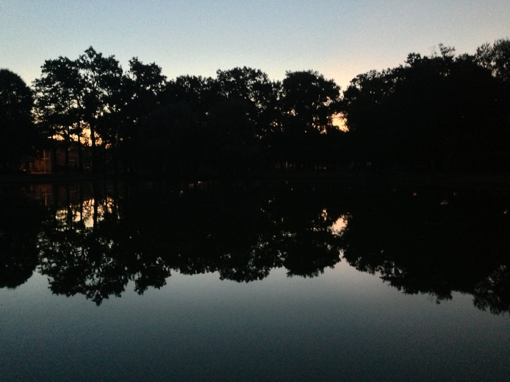 This morning's sunrise was obscured by trees and reflected off the pond.