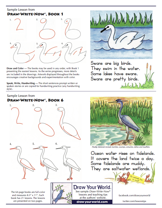 Draw Write Now Sample Lessons, Swan and Heron
