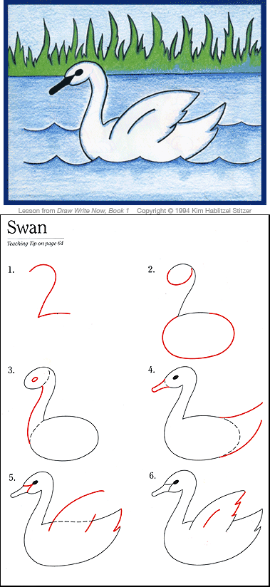 Draw Your World: Swan Drawing Lesson from Draw-Write-Now, Book 1.